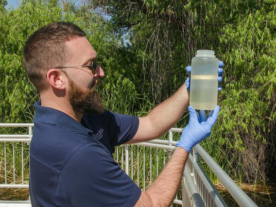 Student studying water quality