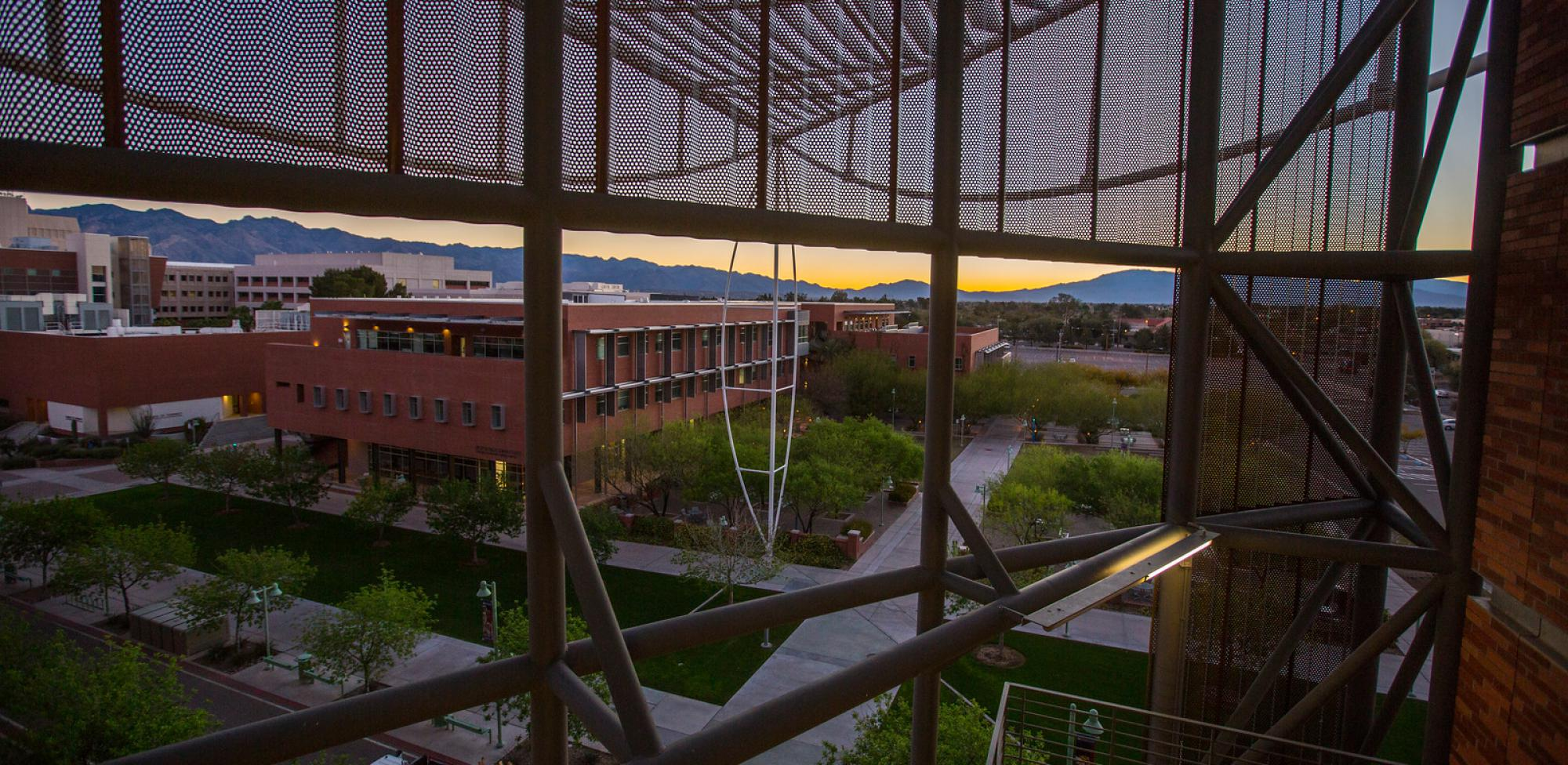 Bio5 Institute during sunset