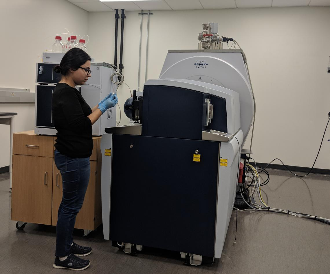 Environmental science graduate student in lab