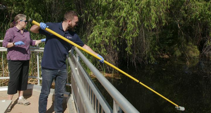 Sampling algae in Sweetwater Wetlands