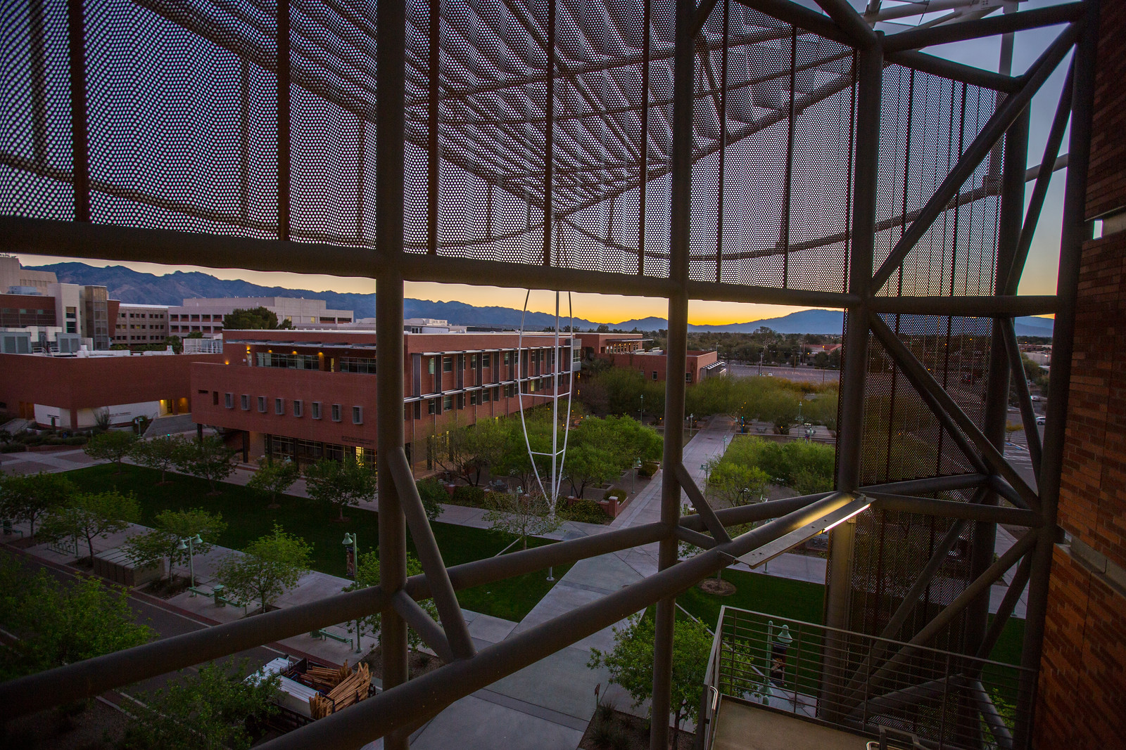 Bio5 Institute during sunset